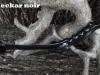 neckar-schwarz-3-kopie