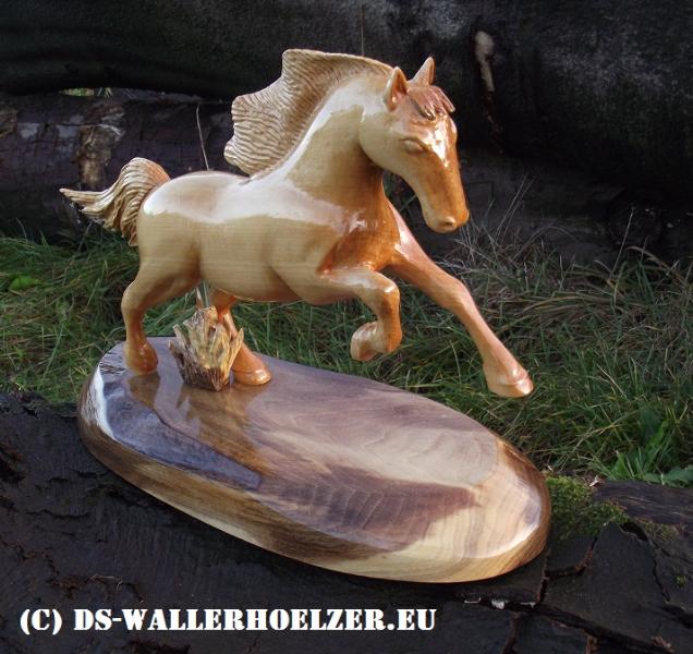 pferd-7