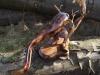 skulpturen-sarrwallermesse-045
